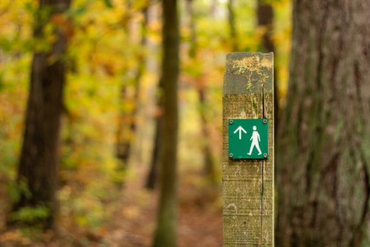Trail marker with standing walking person icon.